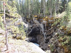 Athabasca Falls (kevinmklerks) Tags: mountains nature forest waterfall rocky falls