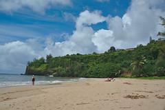 DSC05045 (deerhake.11) Tags: kalihiwaibeach kauai