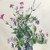 floweres (kumi matsukawa) Tags: watercolor floweres