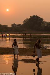 Morning Bathe (Nick Mayo/RemoteAsiaPhoto) Tags: india festival sadhu chhattisgarh rajim