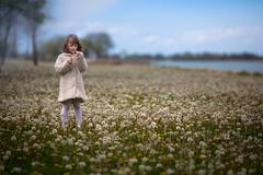 Dandelion Dreams (Philocycler) Tags: girl child bokeh dandelion chicagoist dandeliondreams