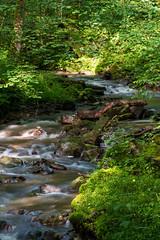 Quirlig (thunderbird-72) Tags: water germany de deutschland wasser bach grn wald stein allemagne moos saarland frhling steinbach mettlach grntne nikond7100 tamronaf70300mmf456divcusdif