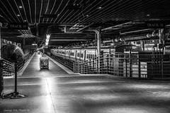 Track 19 (Georgio's Photography) Tags: street nyc newyorkcity blackandwhite bw newyork monochrome mono manhattan scenicsnotjustlandscapes