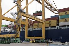 _DSC0103 (Alfonso C. Orive) Tags: tren puerto container contenedores gruas puertoseco alfonsocorive