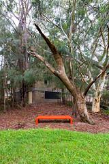 orange fibreglass bench (ghee) Tags: heritage architecture canon concrete sydney australia nsw kuringgai 6d lindfield ghee gwp davidturner brutialism guywilkinsonphotography utskuringgaicampus universityoftechnologykuringgaicampus