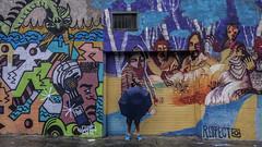 Newtown wall  Art Sydney (Tonitherese) Tags: city graffiti sydney newtown
