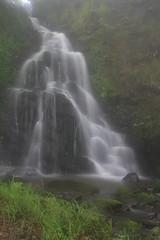 Parque natural de #Gorbeia #Orozko #DePaseoConLarri #Flickr -098 (Jose Asensio Larrinaga (Larri) Larri1276) Tags: 2016 parquenatural gorbeia naturaleza bizkaia orozko euskalherria basquecountry