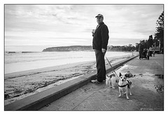 at the beach  #192 (lynnb's snaps) Tags: ocean bw man film beach dogs coast 28mm sydney olympus rodinal 2016 om4 panfplus omzuiko28mmf35