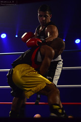 SUJET | Boxe (Camille.r_photographer) Tags: red france sport rouge photo nikon photographie action interieur ring lumiere lemans couleur homme boxe reportage decembre lumire antares pdv boxeur ozata ilumin d5100 camillerphotographer punchlivefightnight bouarfaomar ozatasamet