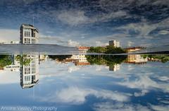 ↑↓ (AVasilev) Tags: reflection buildings sky slouds sofia отражение сгради облаци небе софия