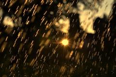weather (joy.jordan) Tags: raindrops sunset light bokeh summer 52by52