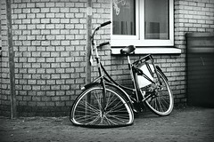 Inge Hoogendoorn (ingehoogendoorn) Tags: blackandwhite bicycle wheel wheels streetphotography bicycles blacknwhite fietsen wielen fiets sadbikes wiel bikewreck dutchbike fietswrak dutchbikes