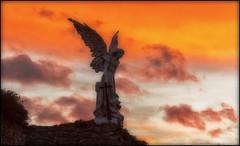 ANGEL FROM HELL . (TOYOGRACOR) Tags: sky panorama paisajes angel canon rojo flickr dof fav50 paisaje windmills escultura explore galaxy cielo panoramica pueblos lanscape cantabria nwn comillas godlovesyou cielorojo fav100 bej cantabriainfinita mywinners abigfave flickrdiamond platinumheartward panoramafotografico mygearandme mygearandmepremium mygearandmebronze mygearandmesilver anpegon angeldecomillas