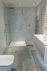 3L5A6535 (terrygrant1) Tags: bathroom porcelain tiling