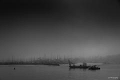 The great escape (.KiLTRo.) Tags: santabarbara california unitedstates kiltro shore coast usa outdoor boats monochrome bw fog mist sky clouds d750 cloudy weather