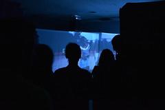 """Videoinstalación: El Llamado de Benkos. """"Documental expandido"""" Diana Kuellar - Mauricio Prieto - Colombia - """"Muestra Monográfica de Media Art - convocatoria internacional"""""""