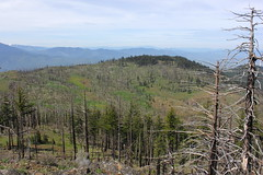 The view impressed, despite the hazy sky (rozoneill) Tags: road oregon forest river dead hiking indian national rogue siskiyou ashland medford blm