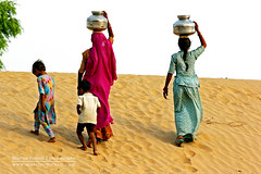 The fruits of labor | Rajasthan, India (marcusfornell) Tags: poverty woman india water children women asia asien child desert labor poor pots labour indien rajasthan supply southasia fount thardesert südasien