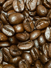 A Bunch of Coffee Beans (Chosen at Random) Tags: macro coffee bean m42 manualfocus coffeebean extensiontubes e420 supertakumar11855