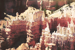 (Dangerous...Dan) Tags: park nature rock stone outdoors utah united hike formation national bryce states geology