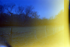 Light Leak (Saturated Imagery) Tags: blue lights lomography toycamera grain leeds leak madeinitaly expiredfilm meanwood meanwoodpark ferraniasolaris200 epsonv500 boots200 photoshopelements9 leclicfunshooterfs30