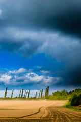 Dust storm (SimonFlint) Tags: trees sky storm field clouds wind farmers windy dust nikond5100