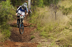 Josh Bengston, Toowoomba Sunshine Series RD1 (Angus Loraine) Tags: world mountain cup sunshine giant for greg sam glory hill aaron downhill biking queensland danny hart series gee toowoomba cycles riders specialized atherton gwin minnaar ashgrove