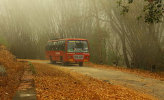 Udumalpet, India