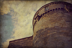 my own castle (silviaON) Tags: castle may textured badbentheim phoneshot 2013 skeletalmess flypapertextures isabellafranceaction