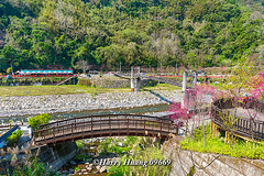 Harry_09669,,,,,,,,,,,,,,,,,,,,, (HarryTaiwan) Tags: taiwan    d800                       harryhuang