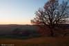 (Stefano Casalini) Tags: tramonto immaginare cretesenesi unconditional impressioni gnosi incondizionato sienalandscape stefanocasalini seneseclays alcalaredellasera sammasambuddhassa