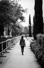 La pasarela (vigotski (Javier)) Tags: madrid street calle streetphotography callejera fotocallejera plazacastilla paniagua fotografiacallejera fotografíacallejera vigotski paniwater javierpaniagua