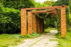 IMG_8603 (nkumarm) Tags: brick leaves canon eos leaf flora arch bricks entrance gateway 1855mm leafs 550d poonga semmozhi