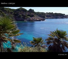 (thirau) Tags: travel nature natur insel mallorca isle isla mediterraneansea balearen mittelmeer 2013 calagat thirau hrauk