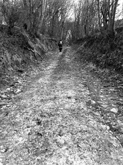 The wet old way by Stanley Donwood (Faber Books) Tags: nature radiohead holloway rambling stanleydonwood robertmacfarlane danrichards ancientpaths