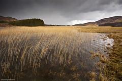 I think its gonna rain.... (garrysmith~photogaphy) Tags: light skye water landscape scotland isleofskye innerhebrides loch broadford lochan elgol leefilter