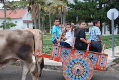 Catching a ride, Costa Rican Style (B.Polon) Tags: church latinamerica boys animal children photo costarica village ox latin tropical oxen oxcart yoke ticos yoked d80 oxcartfestival tierrasmorenas paintedwoodencart