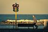 Bari at golden hour (Giovanni Chiaia (aka Kiace)) Tags: sunset vintage golden cross sony hour 200 processing m42 jupiter puglia bari a55