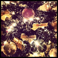 Christmas Tree... Oh Christmas Tree (Laura Daura) Tags: christmas decorations glow twinkle christmastree christmaslights brightlights bows