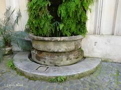 Monserrato 149 (Via) - Palazzo d'Aste 07 (Fontaines de Rome) Tags: rome roma fountain brunnen fuente via di font fountains palazzo fontana fontaine rom fuentes bron aste 149 fontane monserrato fontaines viadimonserrato palazzodaste viadimonserrato149