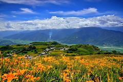 DSC_1951~1.. 60..08.18.2013 (Hualien- Mt. Sixty Ton ) (michaeliao27) Tags: