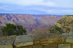 Beyond the edge (lihhilg) Tags: arizona usa america us grandcanyon az exchangestudent rotaryyouthexchange exchangeyear
