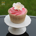 """Rose wedding cupcakes 17 Aug '13 • <a style=""""font-size:0.8em;"""" href=""""https://www.flickr.com/photos/68052606@N00/9698170995/"""" target=""""_blank"""">View on Flickr</a>"""