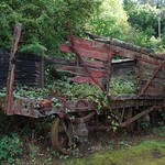 reclaimed wagon