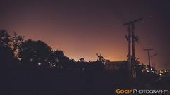 Night Wanderer... (GoCiP) Tags: street nightphotography trees pakistan night stars photography nikon nightlights bright streetphotography photojournalism midnight lahore electricpole starrynight brightstars d7100 gocinematic nikond7100 gocip zeeshangondal