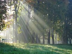 (ela_s) Tags: słońce jesień światło październik ławka canons90