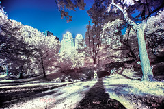 Central Park, Manhattan, New York (josecarlo1129) Tags: nyc usa landscape ir travels nikon parks tokina filter infrared hoya d300 r72 1116 vision:mountain=0523