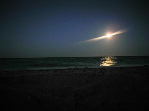 Beach 096