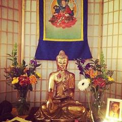 Mitra Ceremony Shrine, No. 2   Portsmouth Buddhist Center, NH, USA. #urbanretreat