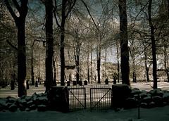 The Cemetery (iEagle2) Tags: winter snow cemetery olympuspen sn ep2 vstratunhem olympusep2
